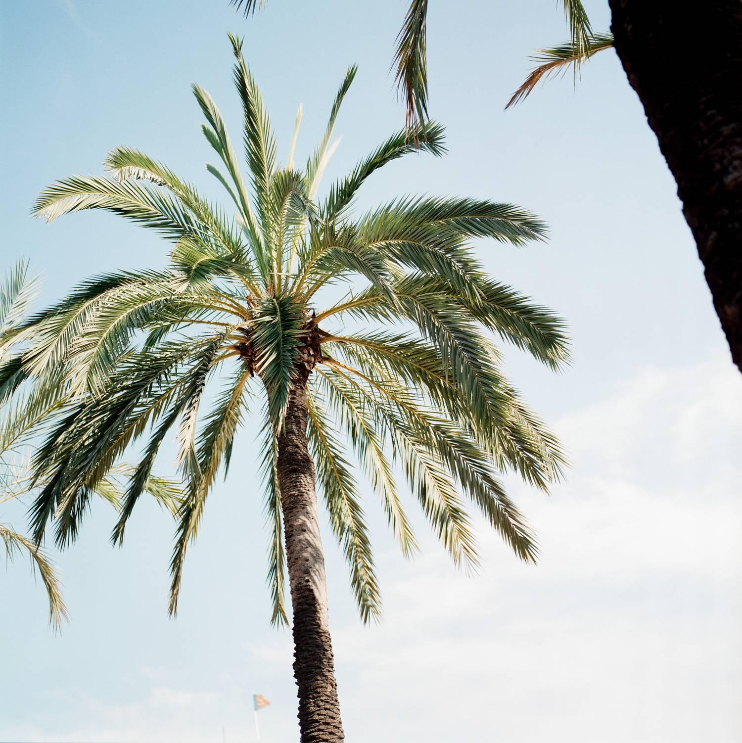Valencia blue skies